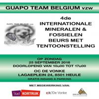 Guapo Team Belgium